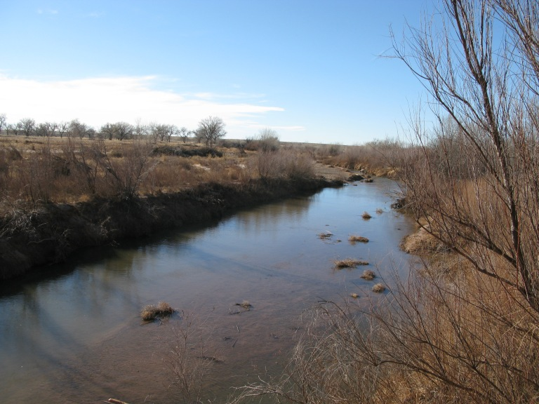 2014-01-15 Bosque Rendondo Pecos River by Gary Fillmore